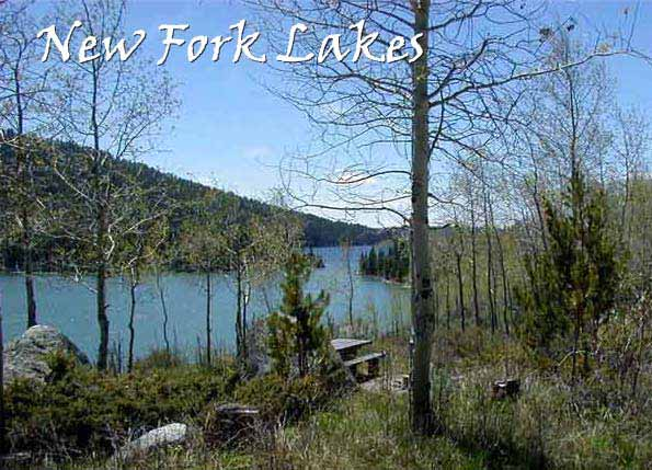 New Fork Lakes Narrows Campground