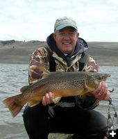 Bill's big brown