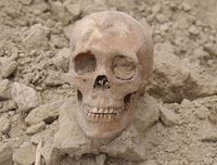 Update on six nearly 1000-year old skeletons found near Pinedale in 2007. Photo by Dave Vlcek, Bonneville Archaeology.